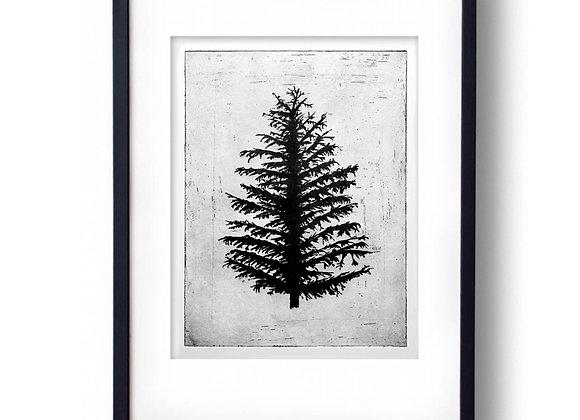 'Norwegian Wood' - Etching