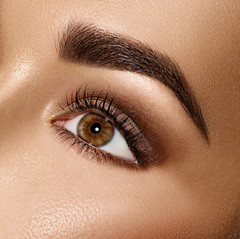 Beauty Brunette Woman Eye with Perfect M
