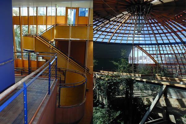 Forestry02_-Dome-UpperL-1_interiors.jpg