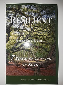 Ebay Resilient.jpg