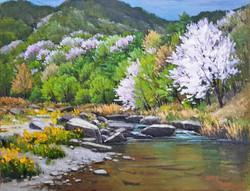 13. Spring in the Jeongseon(정선의 봄) 53.0x40.9(10호)