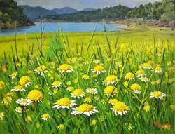 8. The wildflowers of Daecheong Lake(대청호의 야생화) 65.1x50.0(15호)