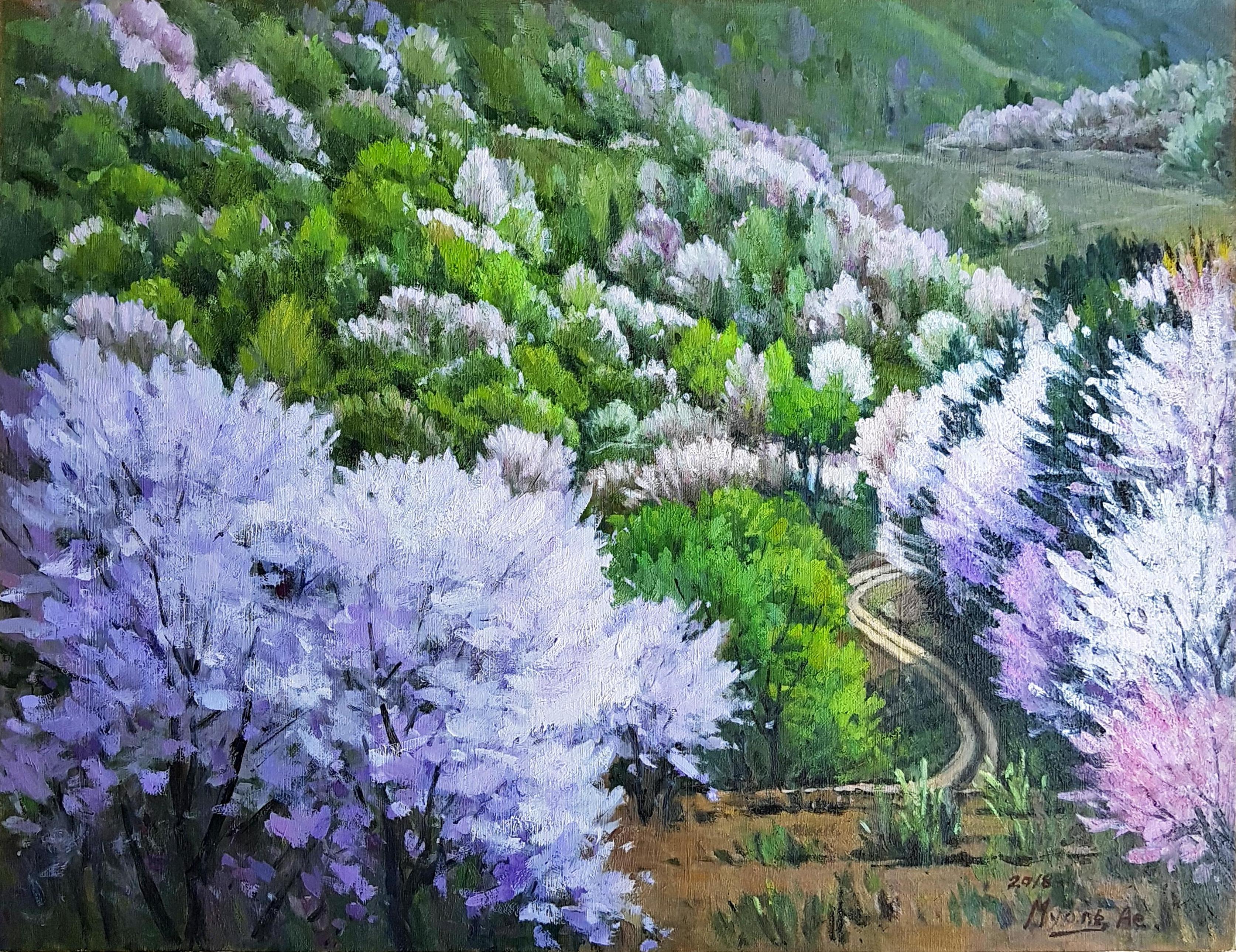 금산의 산벚꽃 53.0 x 40.9