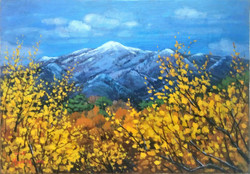 12. Spring in the Sandong(산동의 봄) 53.0x37.0(10호)