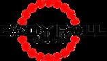 Logo Body Roll Studios.png