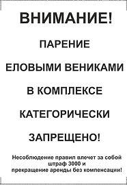 Еловые веники.jpg