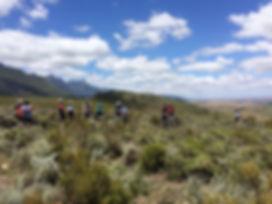 Greyton MTB trails.