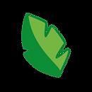 leaf-icon-01-01.png