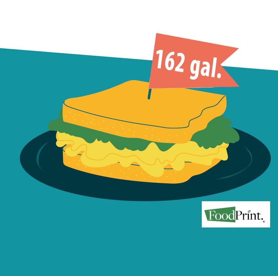 Water footprint by FoodPrint