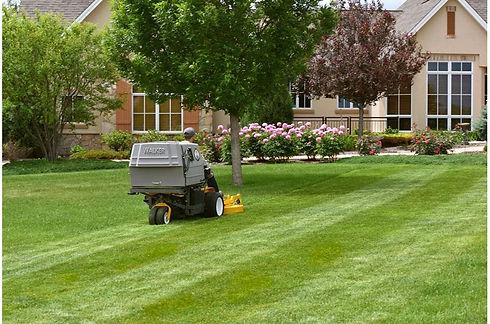 mowing pic.jpg