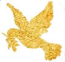 złoty gołąbek