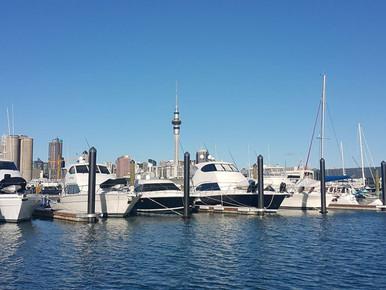 Y Pier, Westhaven