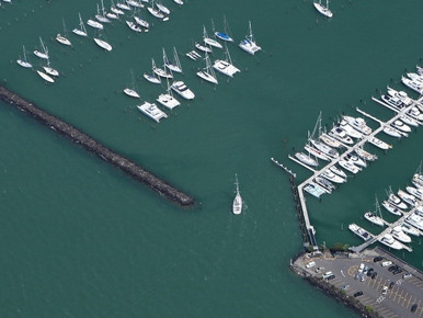Pile Berth Redevelopment, Westhaven Marina