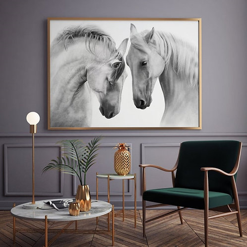 COUPLE WHITE SPANISH HORSES FRAME
