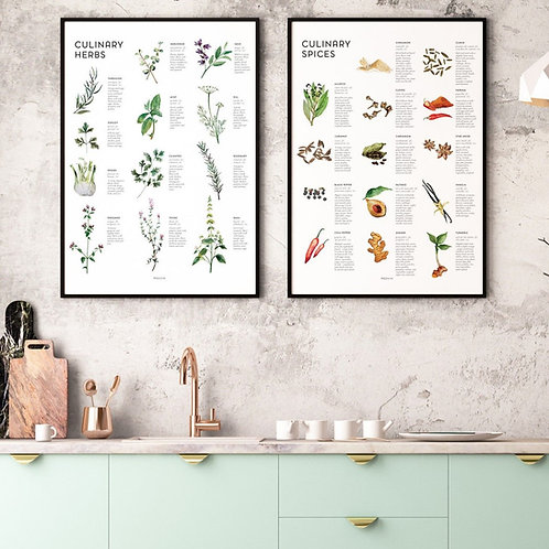 CULINARY HERBS & SPICES SET