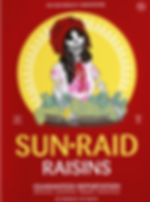 SunRaid.png