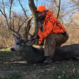 2017 Mule Deer