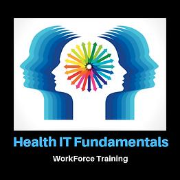 Health IT Fundamentals Icon.png