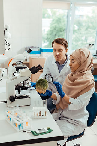 Beige Hijab Grass Male Scientist Vertica