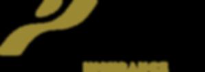 Pyron Group logo.png