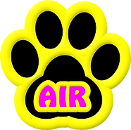 yellow paw.png