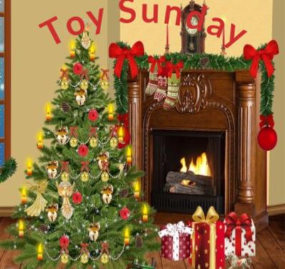 SVDP Toy Sunday