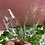 Thumbnail: Sippin' Pretty Etched Wine Glass Set