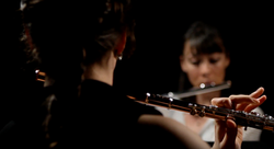 Tarantella for two or three flutes