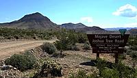 The Mohave Desrt - Joshua Tree Road
