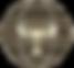 TCVI LOGO - TRANSPARENT_edited_edited_ed