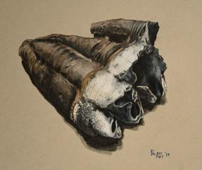 Mastodon molar