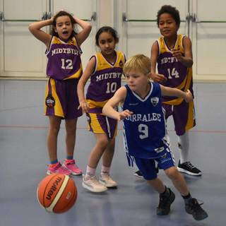 Birralee Basketball