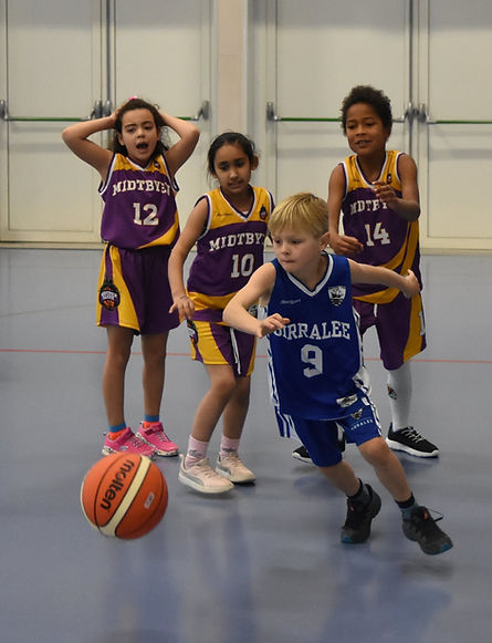 Birralee Basketball 2.JPG