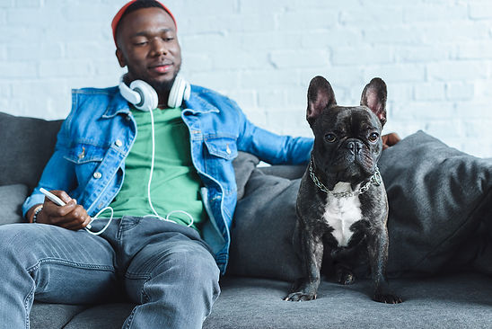 Should-I-Get-a-French-Bulldog-A-Pros-and-Cons-List.jpeg
