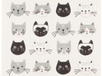 Cats Meow Swedish Dry Mat