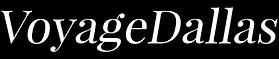 voyage logo.png