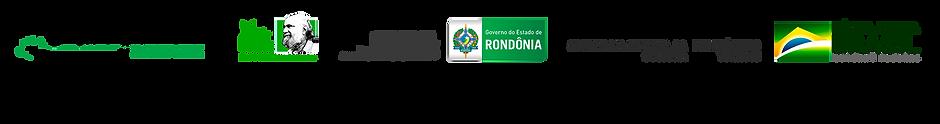 Logomarcas - patrocinadores - Amazônia E