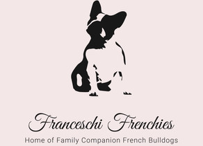 Take a look at our new site and see what you can expect from our French Bulldogs.❤️😊
