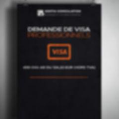 Demande de visa professionnelles.jpg