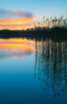 each Sunset - Dr. Robin Wachs, Clinical Psychologist, Therapist, Stamford, CT