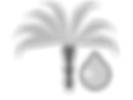_Oil Palm Icon grayscale (1).png