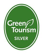 GT Silver Award Logo.jpg