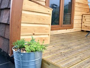 Fresh herbs on the doorstep