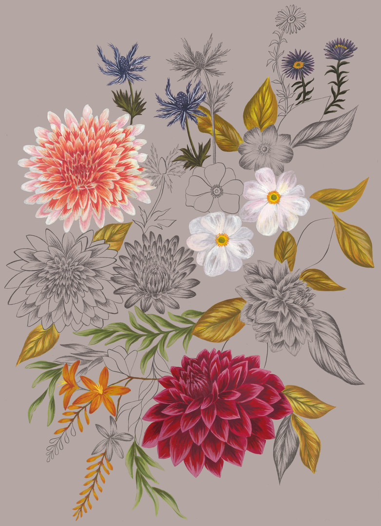 Autumn Botanical Drawing