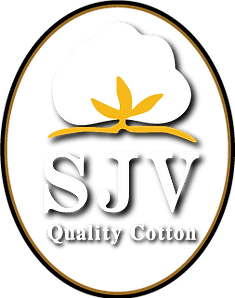 California Cotton San Joavuin Valley Quality Pima Acala California  ELS Extra long Staple
