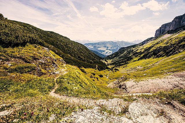 trail12.jpg