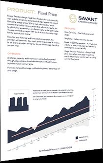 Savant Energy Analysis