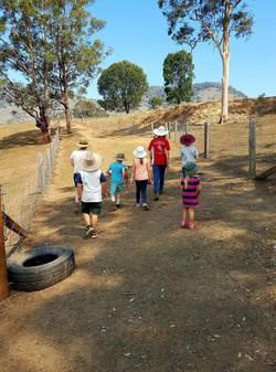 Activities on the farm 1