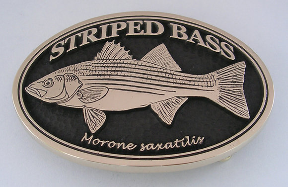 Striped Bass Buckle