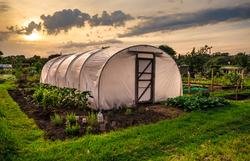 sunset greenhouse